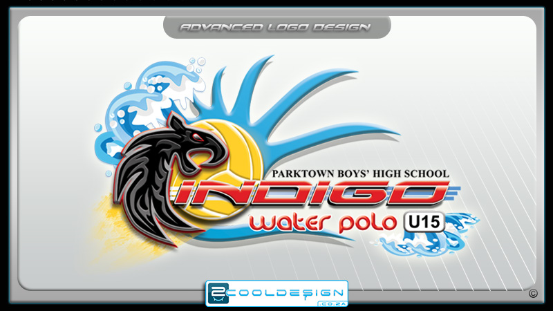 polo team logo design