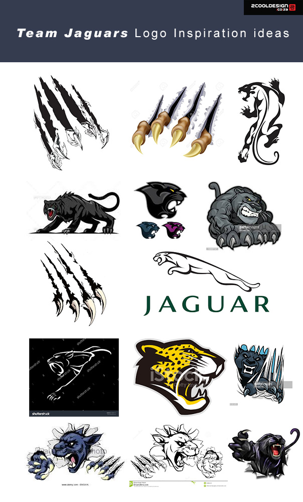 logo-design-team-jaguars-logo-inspiration-research